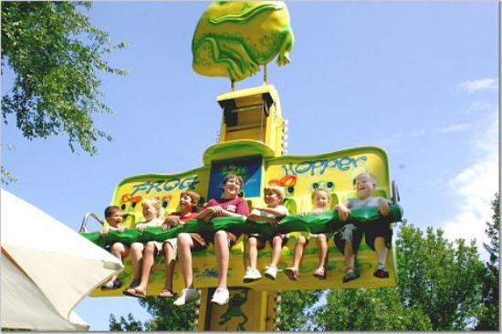 picture of amusement park frog hopper