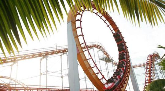 Buy Roller Coaster for park