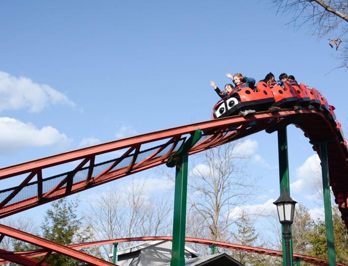 roller coaster for sale
